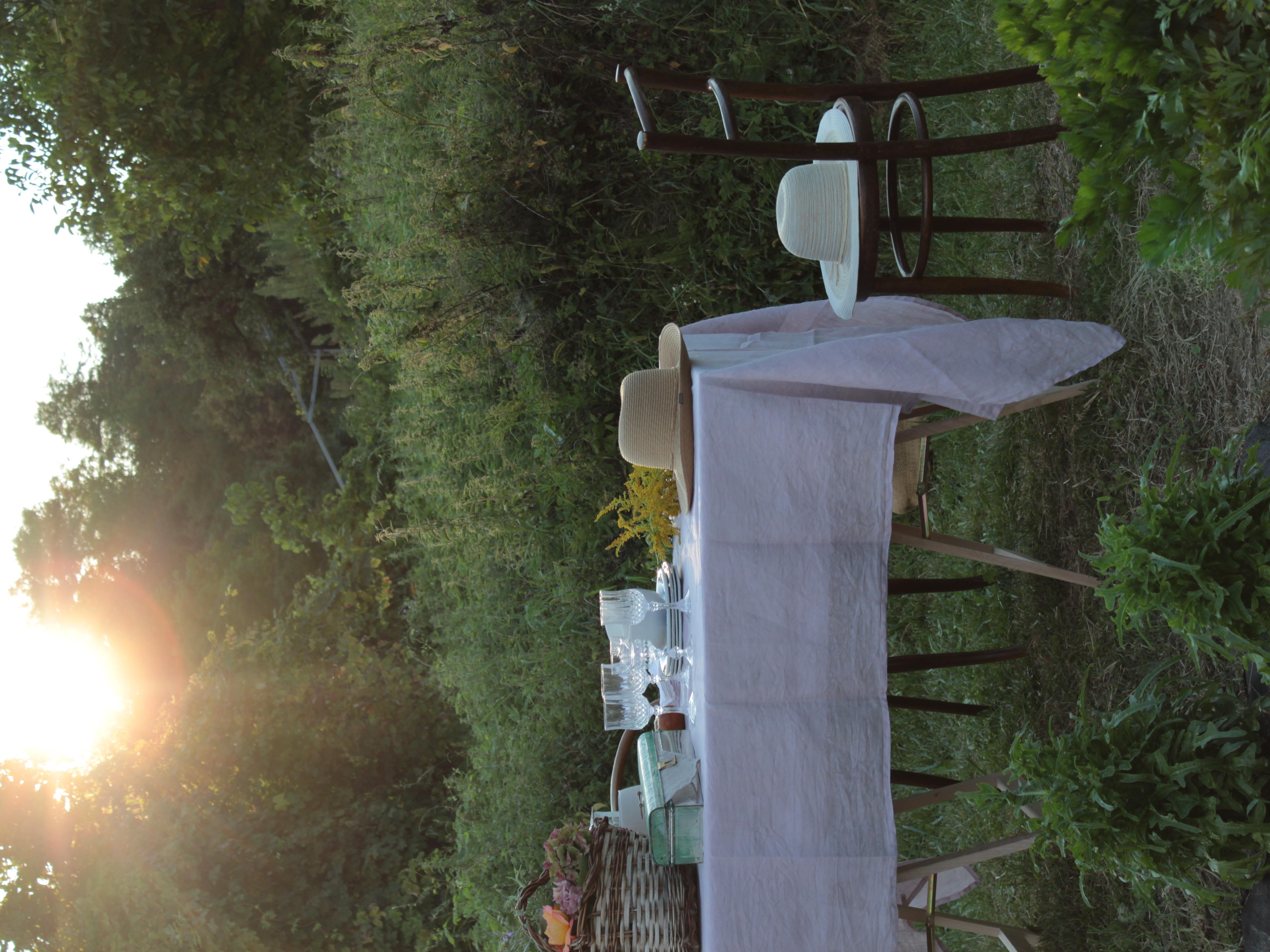 una cena nell'orto al calar del sole