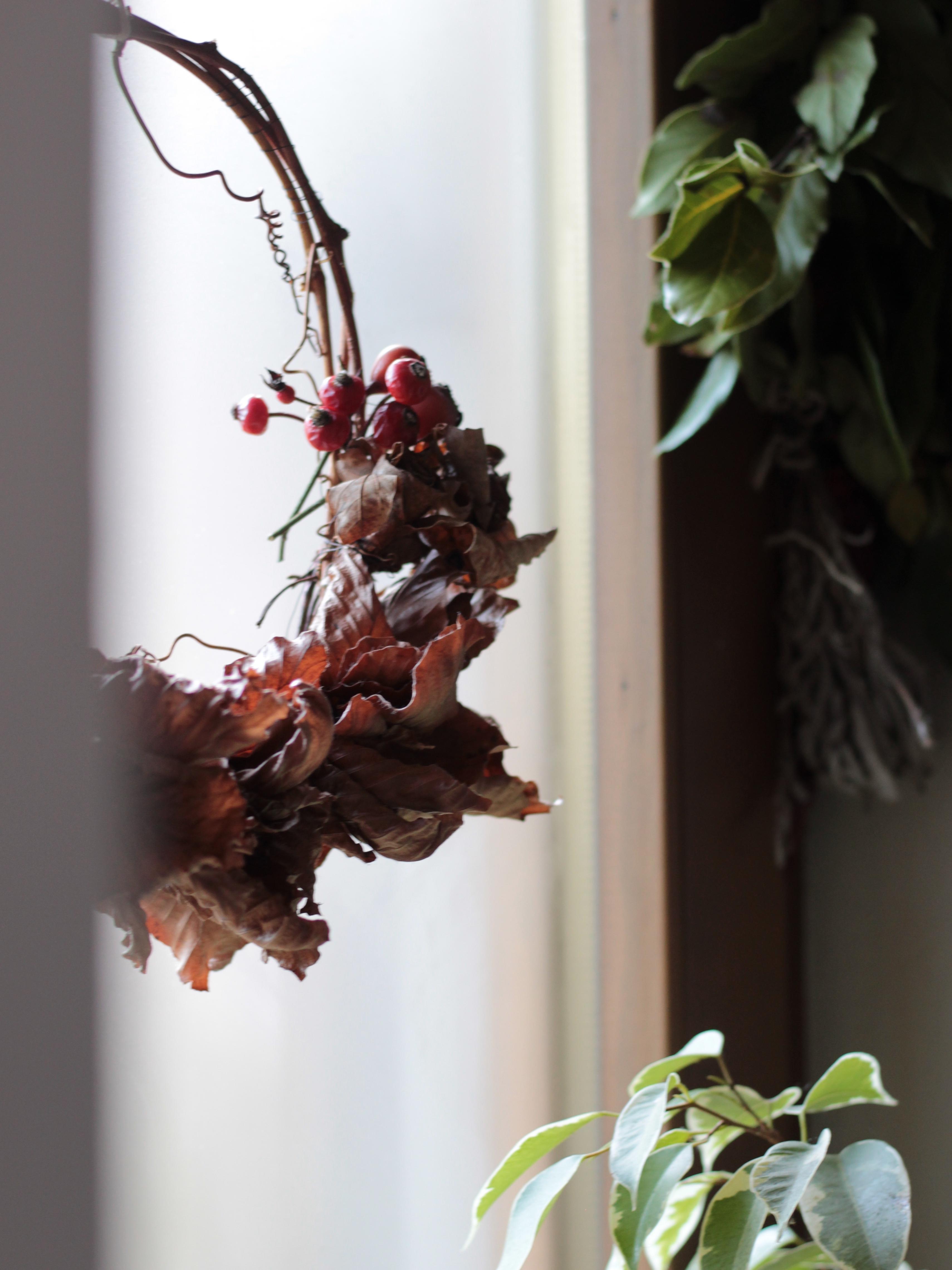 ghirlanda di foglie di faggio e bacche di sorbo appesa alla finesra