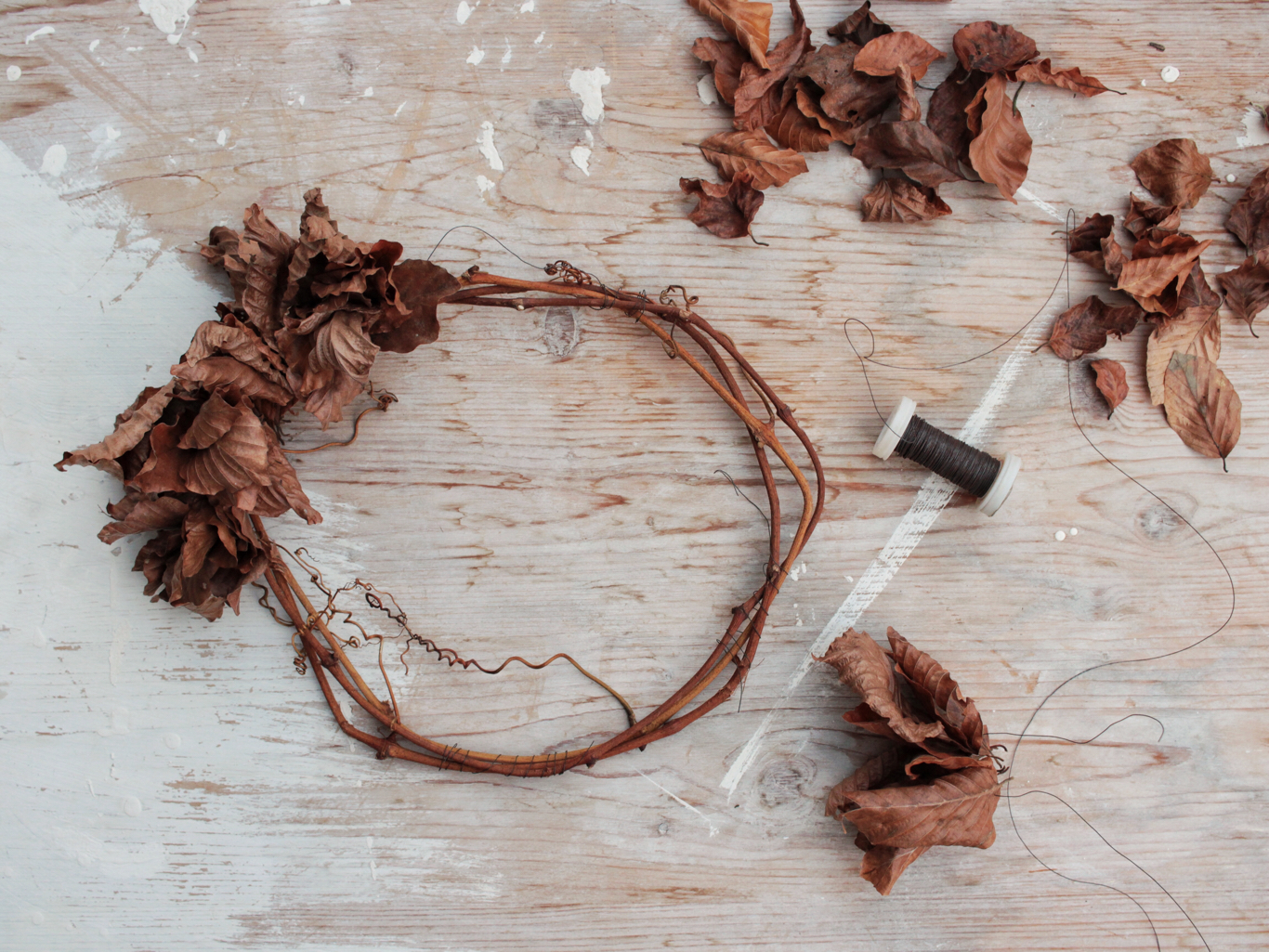 ghirlanda di foglie di faggio